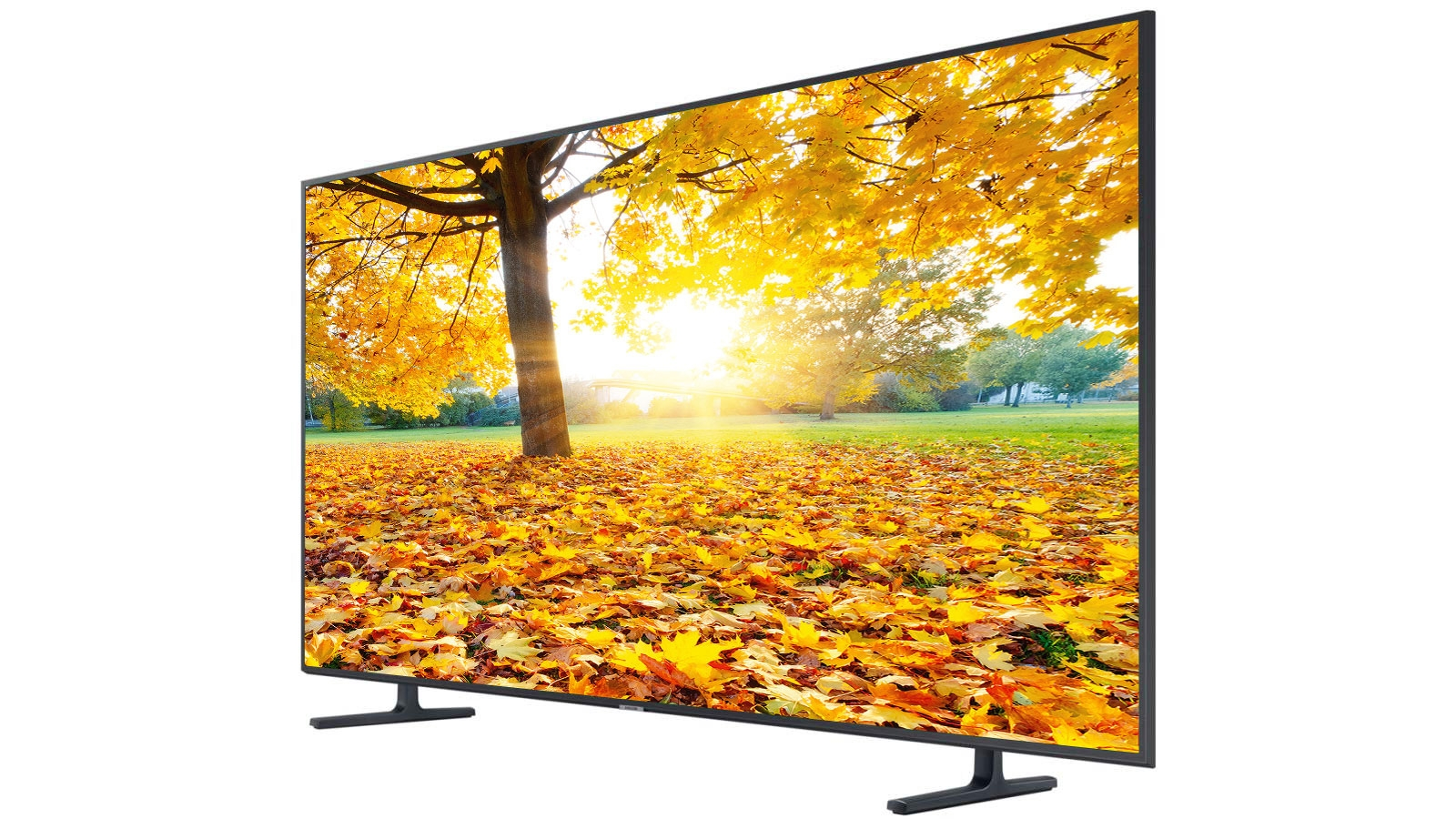 Samsung 65-inch RU8000 4K UHD LED LCD Smart TV