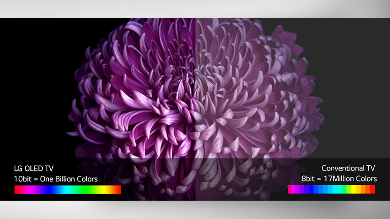 LG OLED Unrivalled Images