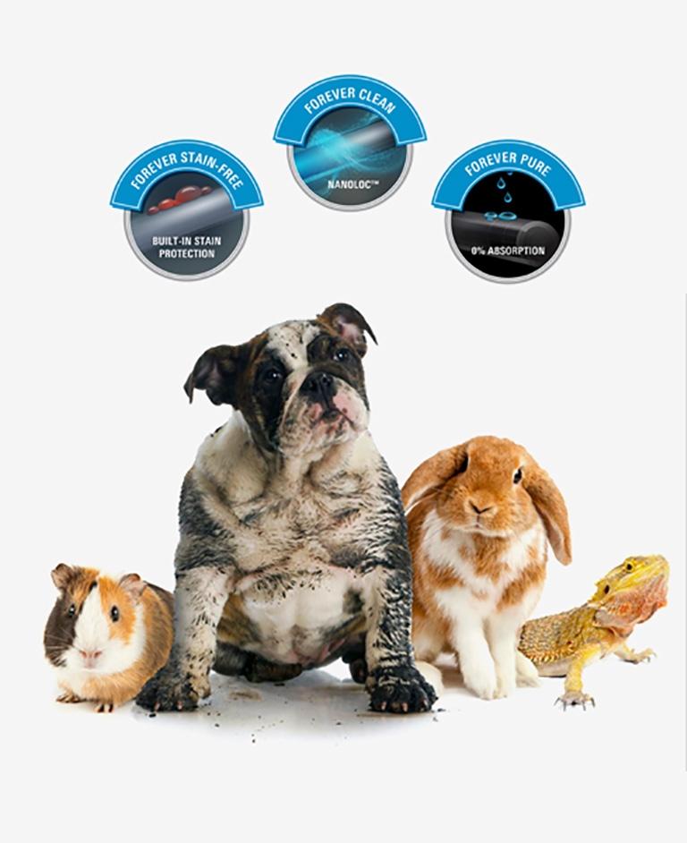 SmartStrand All Pets Protection