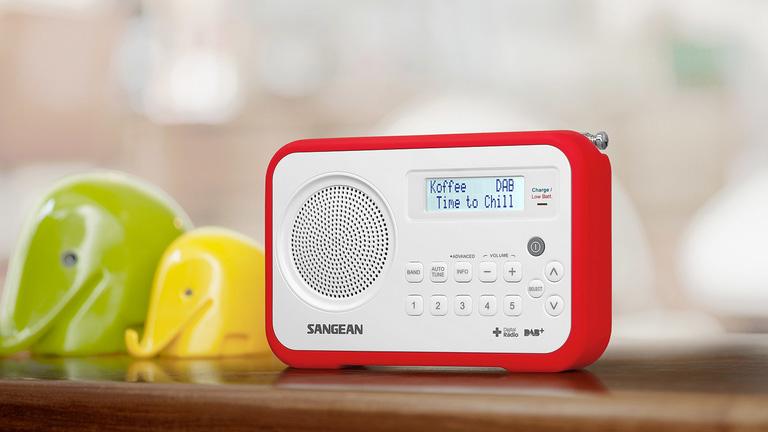 Digital Radio Leads