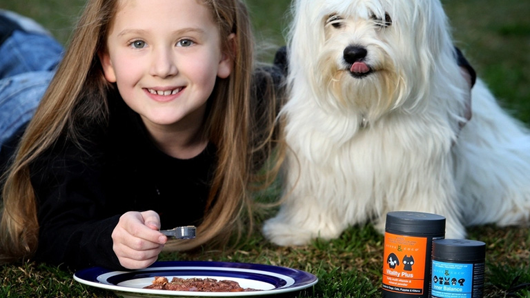Purchasing Products for Dogs