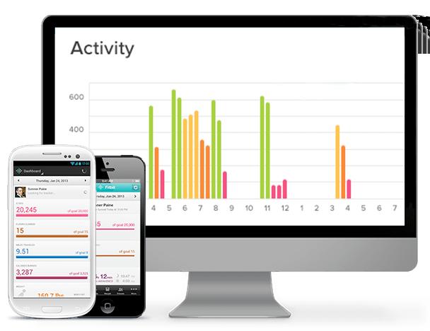 Fitbit Flex Daily Goals
