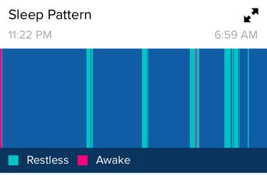 Fibit Surge   Sleep Monitor